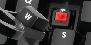 Vollständig mechanische Cherry MX Red-Tastenschalter