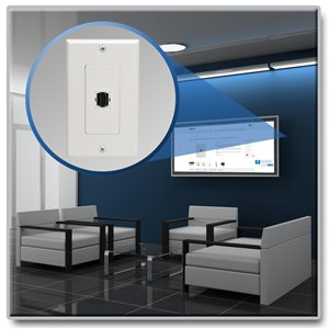 Locate a Remote Monitor Up to 150 ft. Away from an HDMI Signal Source (F/F)