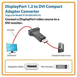 Connect Your DVI Monitor to a Computer with a DisplayPort 1.2 Output