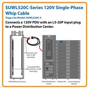 5 ft., 120V Single-Phase Whip Cable with L5-20R Outlet for 3-Phase Power Distribution Cabinets