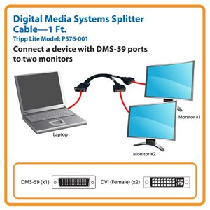 Split the Video Signal from One DMS Port for Display on DVI Monitors
