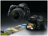 Discover the joy of real photography