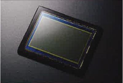 24.3 MP 35 mm Full Frame Sensor