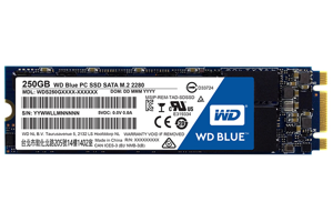 WD Blue SSD 2.5-inch 250 GB SATA III 6 Gb/s Solid State Drive