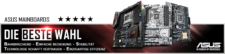 ASUS H110T Mainboard