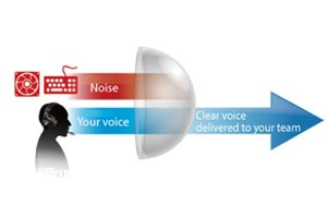 Effiziente Beseitigung von Aufnahme-Störgeräuschen dank Perfect Voice