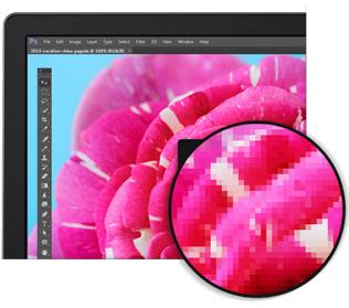 Dell 24 Ultra HD 4K Monitor - P2415Q