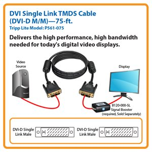 Connect High-Resolution DVI Displays to Your Desktop Computer Up to 75 ft. Away (DVI-D M/M)