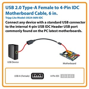USB 2.0 Type-A Female to 4-Pin IDC Motherboard Cable, 6 in.