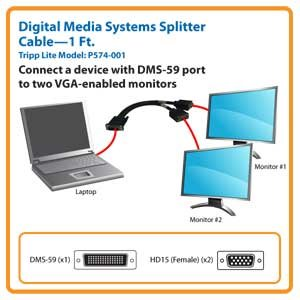 Split the Video Signal from One DMS Port for Display on Two VGA-Enabled Monitors