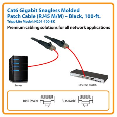 100-ft. Cat6 Gigabit Snagless Molded Patch Cable (Black)