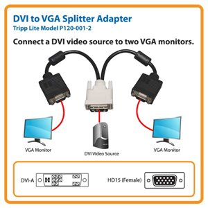 Connect a DVI Video Source to Two VGA Monitors