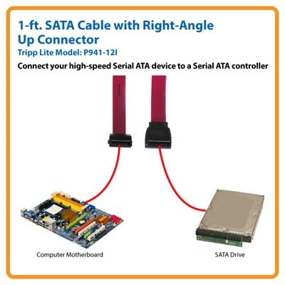 19-in Signal Cable sata Tripplite Serial Ata