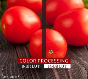 Professional Color Processing Capability