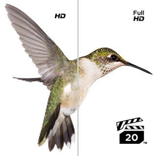 Full HD Video Capture with VPG-20