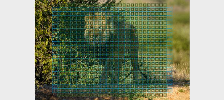 Alpha a7R IV Mirrorless Digital Camera Body