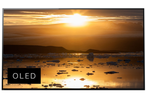 A1E 4K HDR OLED TV with Acoustic Surface<sup>™</sup>