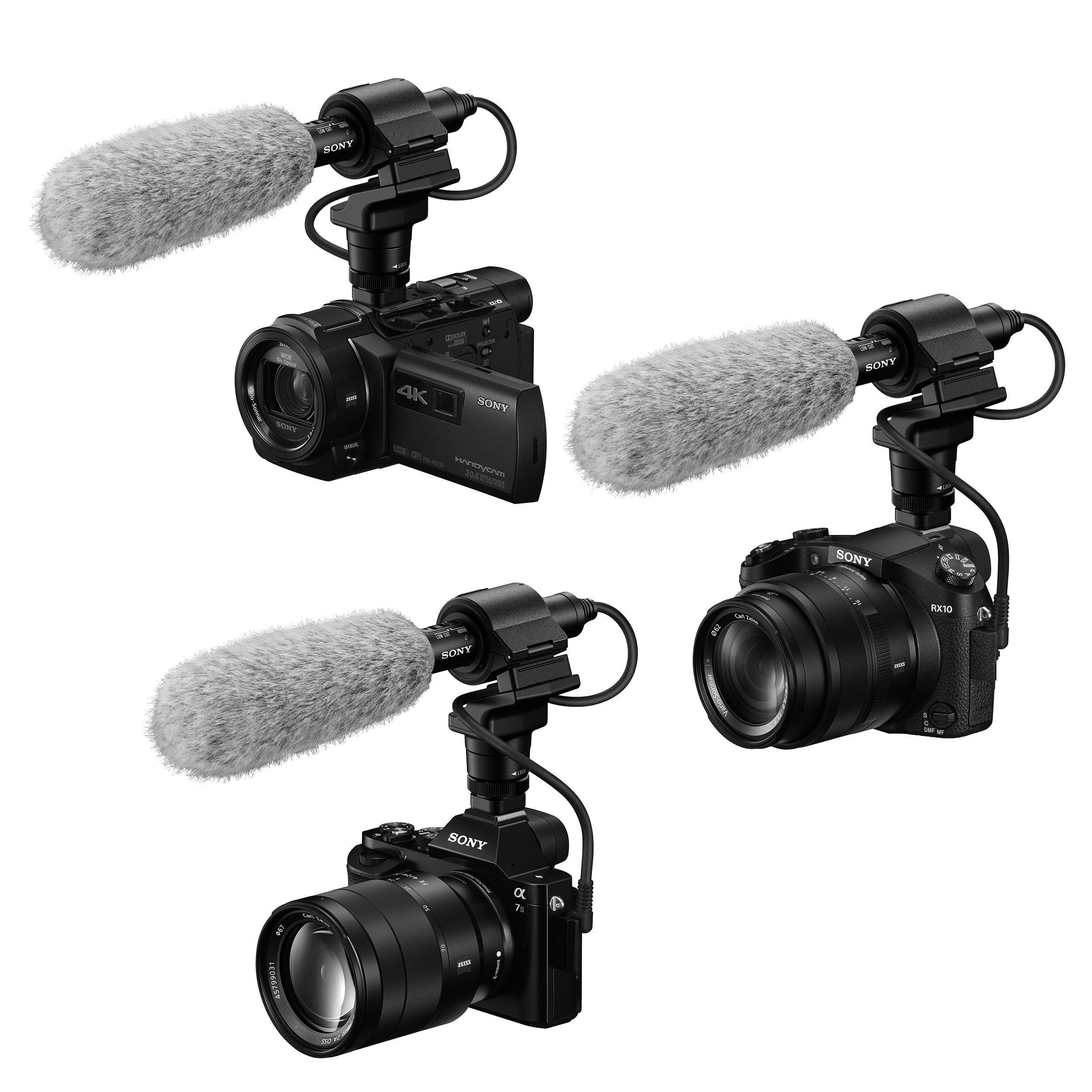 Sony Ecm Cg60 Microphone Ecmcg60 Video Camcorders Hdr Pj810 Handycam Camcorder Pro Quality Performance