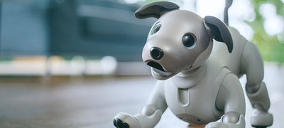 The evolution of the autonomous companion robot.