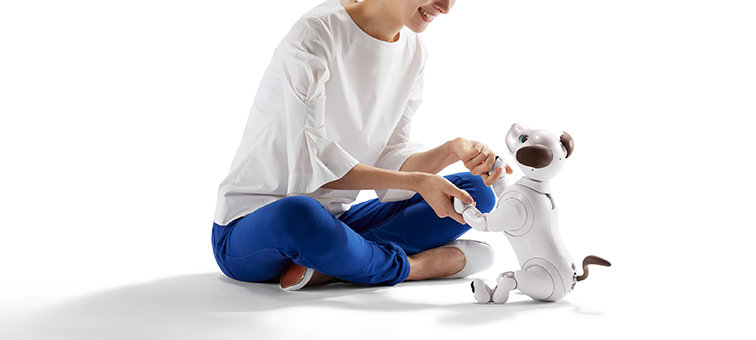 A unique personality powered by the aibo AI Cloud Plan<sup>2</sup>.